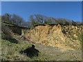 TG2739 : Trimingham Wood by Hugh Venables