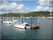SX8751 : Moorings in Dartmouth Harbour by Philip Halling