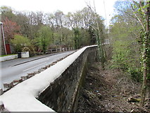 SN8001 : Side of a road bridge over a small stream, Clyne by Jaggery