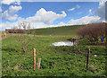 SU3680 : Dew Pond in the Valley by Des Blenkinsopp