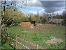 TQ3097 : Grazing and stables, Enfield by JThomas