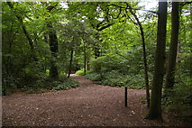 TQ3870 : Junction on the Green Chain walk, Beckenham Place Park by Christopher Hilton