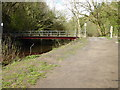 SJ9790 : Footbridge over mill leat - Etherow Country Park by Chris Allen