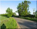SP7289 : Leicester Lane towards Great Bowden by Andrew Tatlow