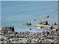 SS2118 : Rocky shoreline north of Welcombe Mouth, Devon by Roger  Kidd