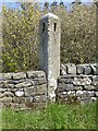 NZ0489 : Old stone signpost by Russel Wills