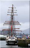 NS2975 : Tall Ship Stavros S Niarchos at James Watt Dock by Thomas Nugent