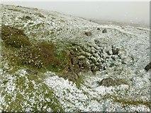 SO6076 : Old coal workings near Doddington by Alan Murray-Rust