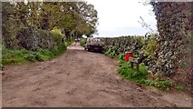TG1613 : Taverham - Mack's Lane by Jeremy Osborne
