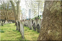 TQ3282 : View along two rows of graves in Bunhill Fields #2 by Robert Lamb