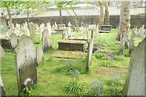 TQ3282 : View of graves in Bunhill Fields #10 by Robert Lamb
