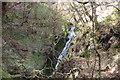 SH7711 : Small Fall, Cwm Ratgoed by Michael Graham