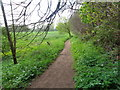 SO8166 : Bridle path emerges from Lower Astley Wood by Jeff Gogarty