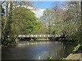 SE3170 : Footbridge over the River Skell by Stephen Craven