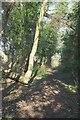 ST7058 : No through bridleway, Peasedown St John by Derek Harper