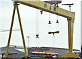 "J3575 : ""Goliath"" lifting, Belfast - May 2016(1) by Albert Bridge"