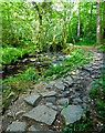 NZ8903 : Stony Footpath along May Beck by Scott Robinson
