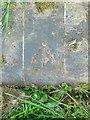 SK9100 : Bench mark, horse trough near Morcott by Alan Murray-Rust