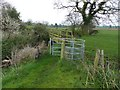 SJ4768 : Kissing gate and footbridge on permitted path by Dave Dunford
