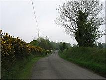 T0530 : Minor road heading for Castlebridge by David Purchase