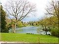 ST7734 : Spring at Stourhead by Derek Voller