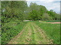 TL8139 : Footpath along arable field margin, off Sudbury Road, Gestingthorpe by Roger Jones