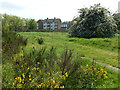 TQ4186 : Wanstead Flats by Stephen McKay