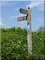 TQ9350 : Multi-faceted signpost at Hart Hill Farm by Oliver Dixon