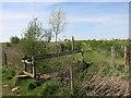 SP3002 : Footpath Bridge near Ham Court by Des Blenkinsopp