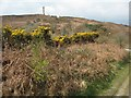 SY6187 : View to the Hardy Monument by Philip Halling