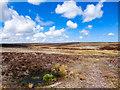SE9198 : Burn Howe Rigg, High Moor by Scott Robinson