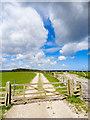 SE9397 : Farmland, Pike Rigg by Scott Robinson