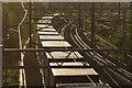 SP4380 : West Coast Main Line, Brinklow by Stephen McKay