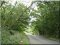 TL3507 : Cock Lane by Robin Webster