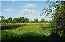 ST0207 : Cullompton Community Association fields by Derek Harper