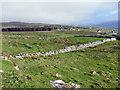 NG2459 : The Farm of Halistra by Richard Dorrell