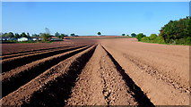 SO4841 : Arable land by Kings Acre Road by Jonathan Billinger