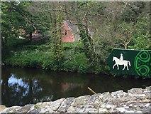 SN0717 : From Llawhaden Bridge by Alan Hughes