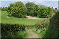 SU8046 : St Swithun's Way near Dippenhall by Alan Hunt
