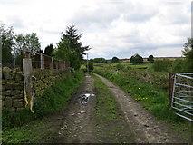 SE0722 : Track - Calderdale Way - to Turbury Lane by Peter Wood