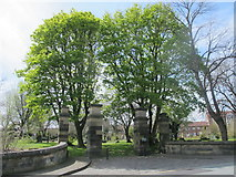 NZ2364 : Gate piers, walls and piers to Westgate Hill Cemetery by Mike Quinn
