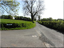 H5575 : Merchantstown Road by Kenneth  Allen