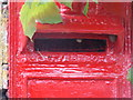 SY7782 : West Chaldon: postbox bristles by Chris Downer