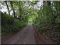ST7661 : Lane at Tucking Mill by Rob Purvis