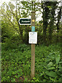 TM1948 : Footpath sign off Flynn Lane by Adrian Cable