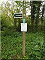 TM1948 : Footpath sign off Flynn Lane by Geographer