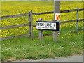 TM1948 : Flynn Lane sign by Geographer