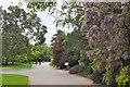 TQ1877 : Path in Kew Gardens by Jim Barton
