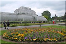 TQ1876 : Flowerbeds and Palm House, Kew Gardens by Jim Barton