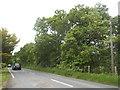 TQ7047 : Collier Street north of Mockbeggar by David Howard